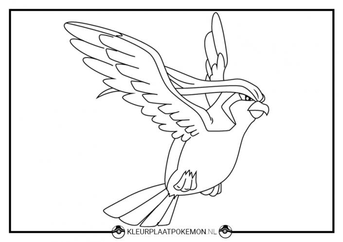 Pidgeot kleurplaat