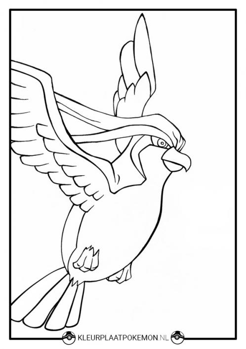 Kleurplaat Pidgeot