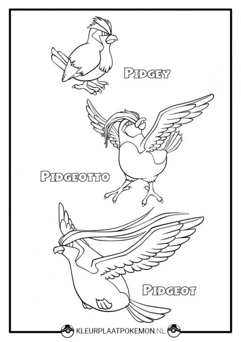 Kleurplaat Pidgey, Pidgeotto en Pidgeot